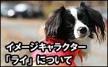 イメージキャラクター「ライ」について エターナル