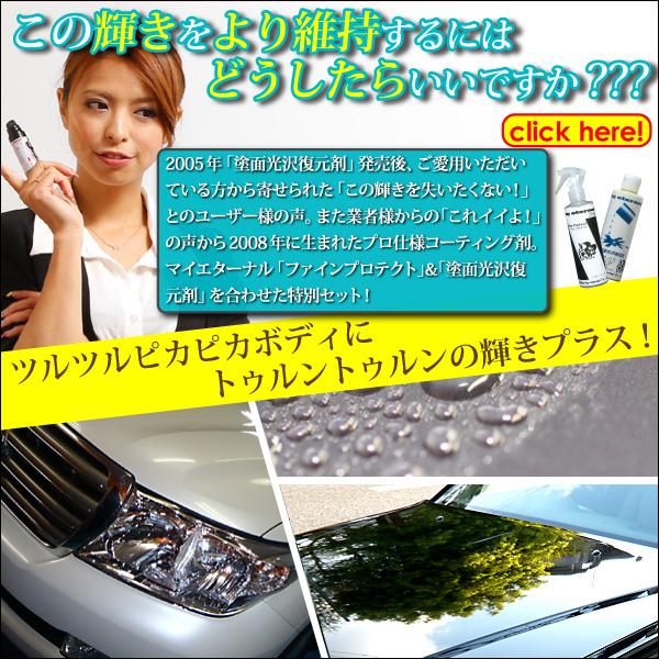 マイエターナルプロ ファインプロテクト 塗面光沢復元剤 エターナル 通販
