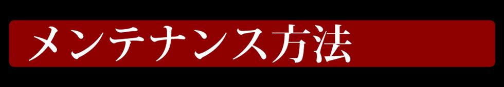 マイエターナル 我魂シリーズ 我魂