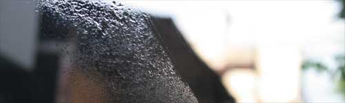 マイエターナル フレッシュウインドウ ガラスクリーナー 窓拭き エターナルeternal